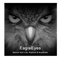 EagleEyes Lite for PC